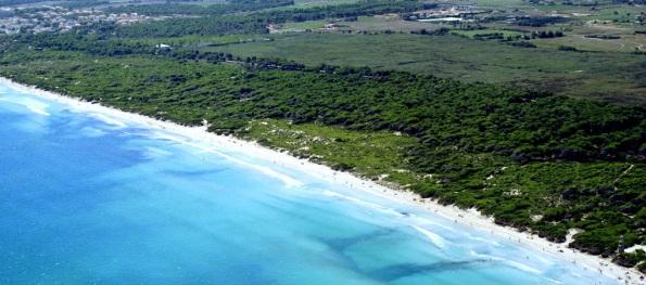 Playa de Muro3