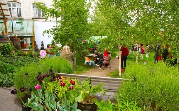 Dalston Garden