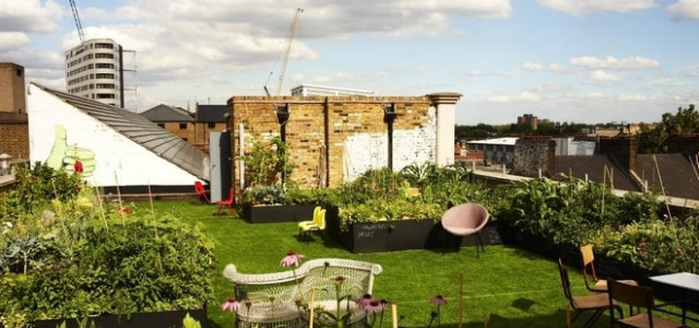Dalston Roof Park 4