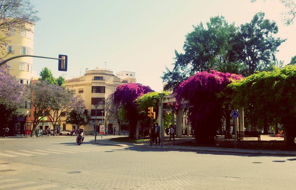 Plaza Columnas 2