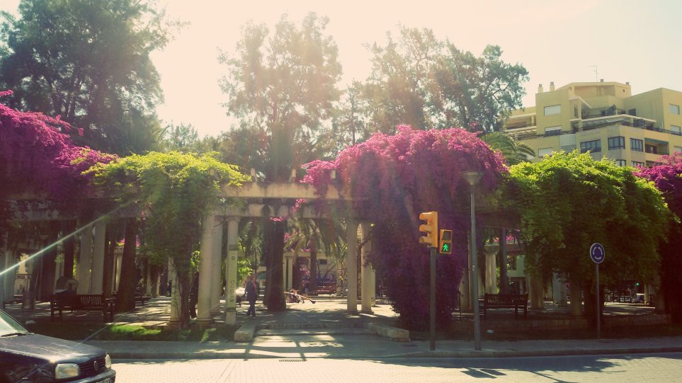 Plaza Columnas 3