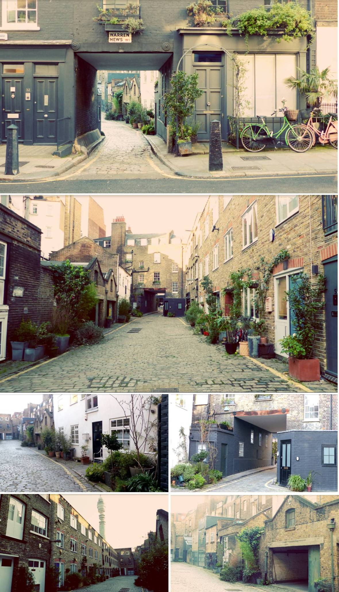 Warren Mews