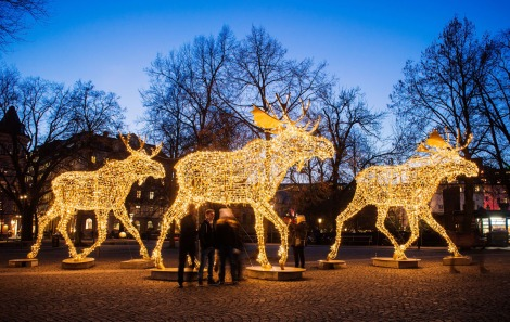Thousands of lights decorate moose statues in Stockholm on December 16, 2014. Stockholm has lit over 700,000 Christmas lights around the city where 35 streets, squares and marketplaces glistens and glimmers of Santas, moose, stars and other decorations that make the dark season brighter for the Christmas season. AFP PHOTO/JONATHAN NACKSTRANDJONATHAN NACKSTRAND/AFP/Getty Images ORG XMIT: -